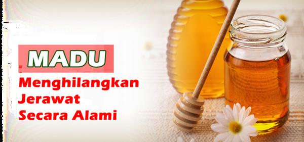 Madu adalah obat tradisional untuk menghilangkan jerawat secara alami