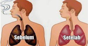 Makanan untuk membersihkan paru-paru