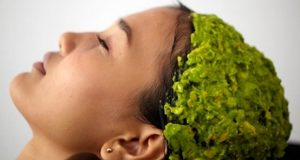 Manfaat alpukat bagi kesehatan rambut