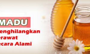 Madu adalah obat tradisional untuk mengilangkan jerawat secara alami