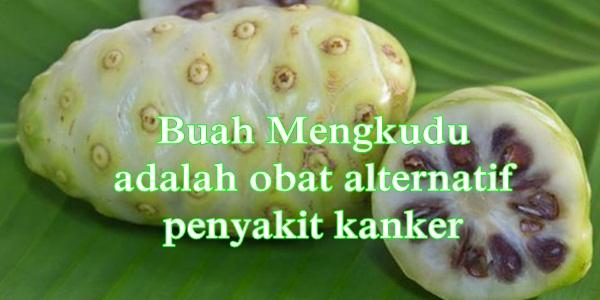 Manfaat buah mengkudu bagi kesehatan