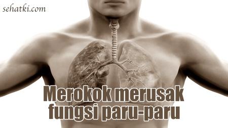 Merokok merusak paru-paru